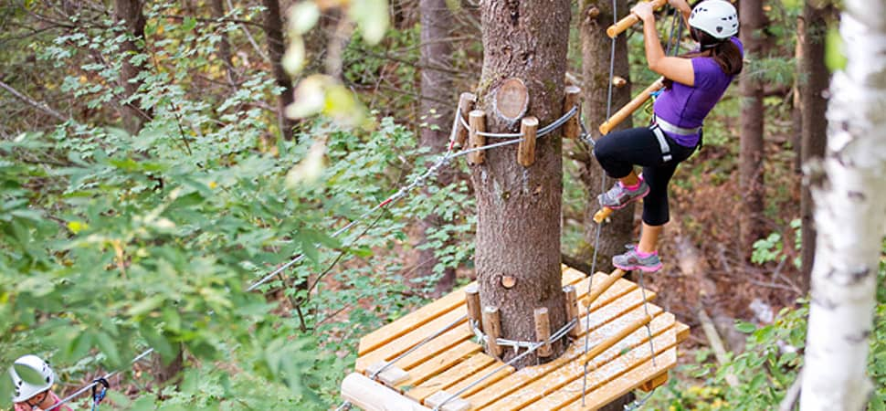 treetop trekking ganaraska zipline aerial park. Black Bedroom Furniture Sets. Home Design Ideas