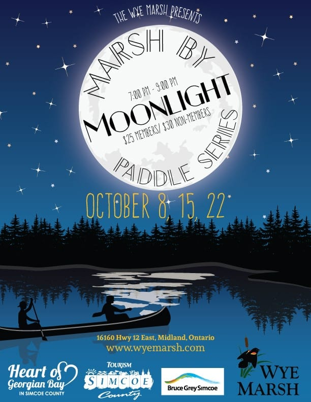 Wm Moonlight Paddle