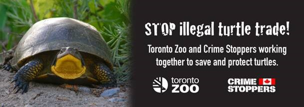 TORONTO ZOO AND CRIME STOPPERS RECEIVE FIRST EVER COMMUNITY PARTNERSHIP AWARD