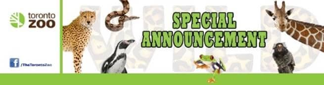 TZ Special Announcement