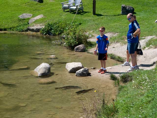 Feed-the-fish at the Trout Pond
